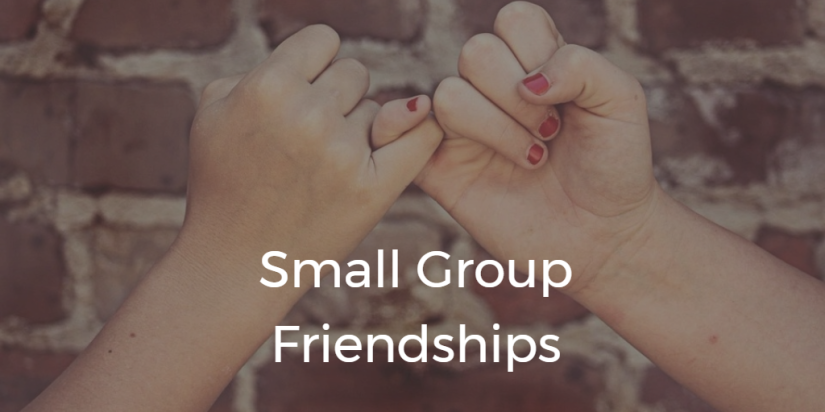 Small Group Friendships