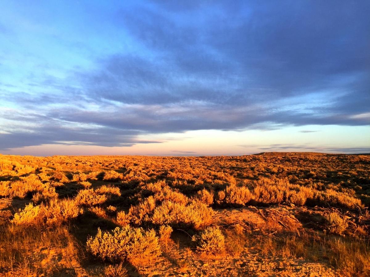 Crossing Wyoming