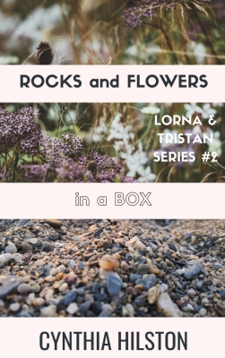 Rocks and Flowers in a Box by Cynthia Hilston